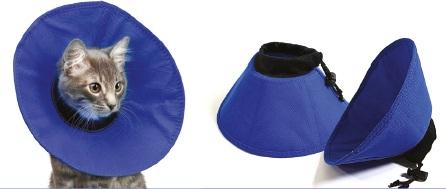 An image of EZ Soft Collars