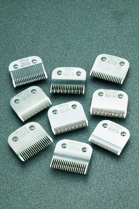 An image of Clipper Blades