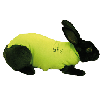 An image of Medical Pet Shirt for Rabbits