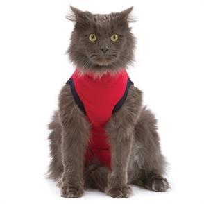 An image of Medical Pet Shirts for Cats