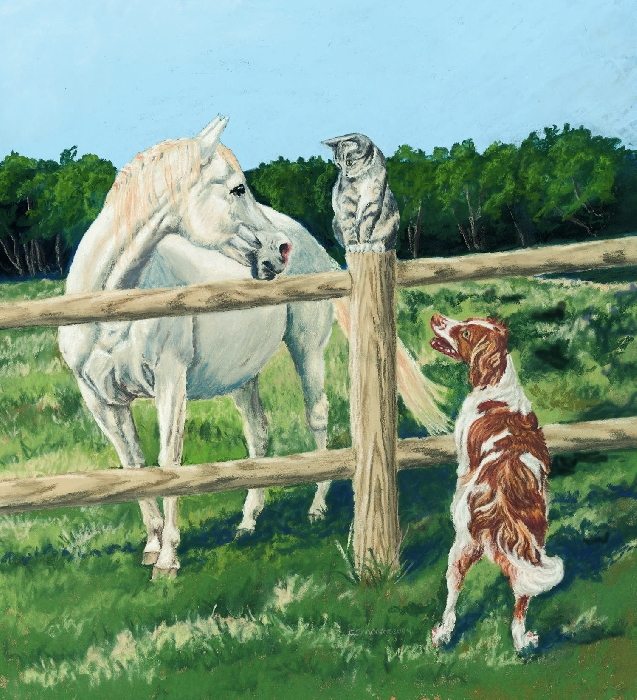 """An image of Sympathy Cards """"Keep me Posted"""" Horses (Blank)"""