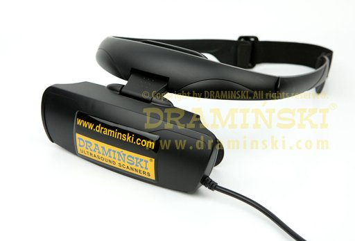An image of 4Vet Ultrasound Goggles