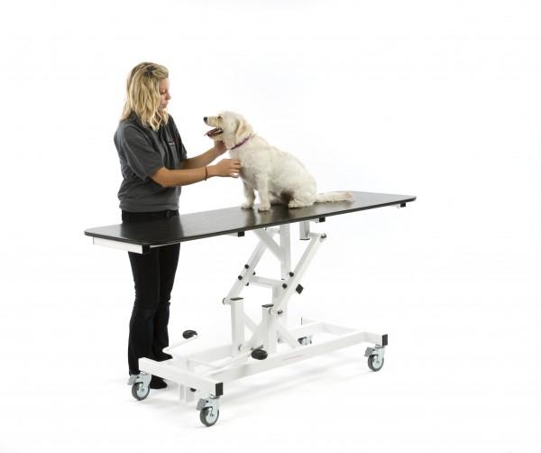 An image of Medi-table Exam Hydraulic 120 x 60cm No-Tilt Height 46-86cm
