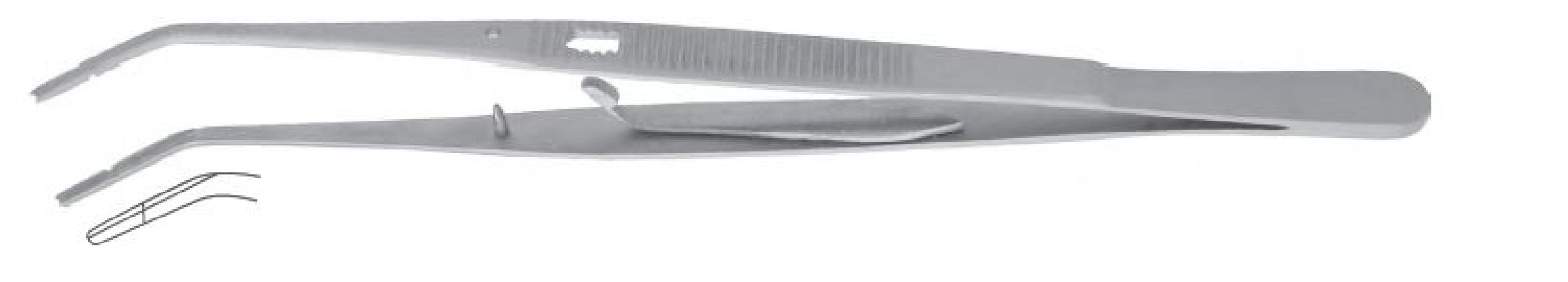 An image of Tweezer