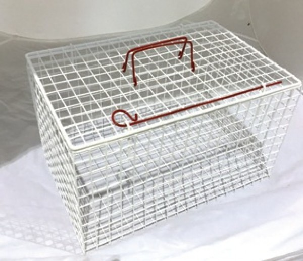 An image of Wire Cat Basket Extra Strong White 45.7x30.5x30.5cm