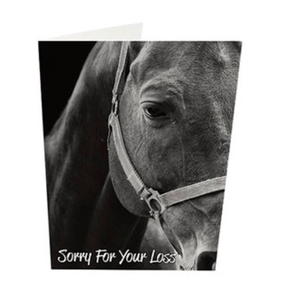 An image of Purfect Sympathy Cards Style 35 - Horses (5)