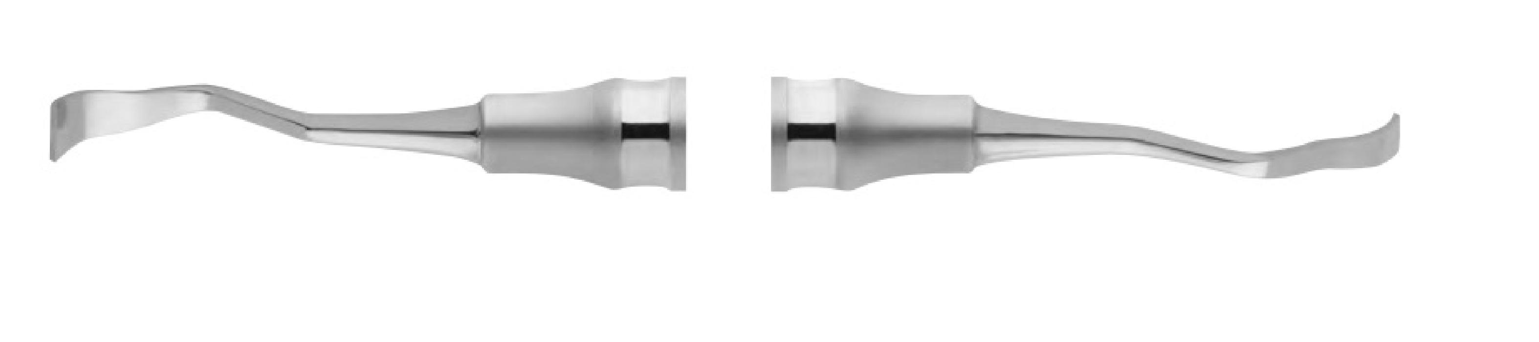 An image of Bone scraper