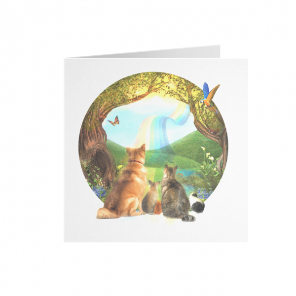 An image of Rainbow Bridge Sympathy Cards (25)