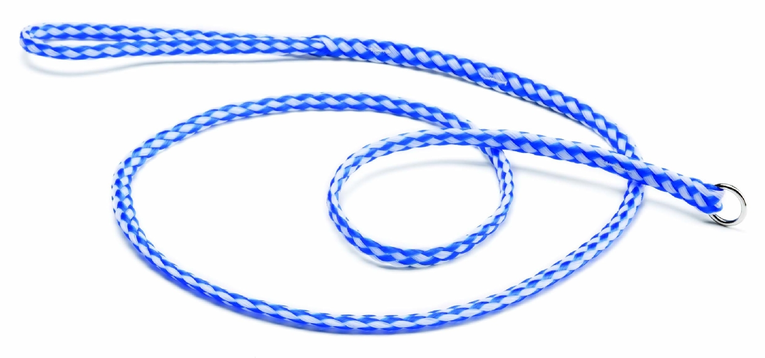 An image of Blue And White Leads 150cm