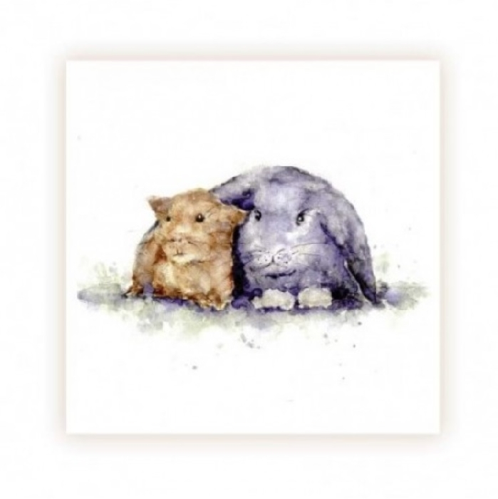 An image of Rabbit and Guinea Pig Cards - Blank (20)
