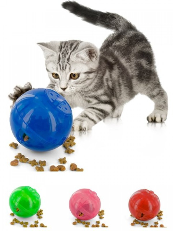 An image of SlimCat™ Countertop Display Of 16 pieces