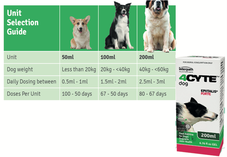 An image of 4CYTE EPIITALIS FORTE for Dogs
