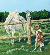 "An image of Sympathy Cards ""Keep me Posted"" Horses (Blank)"